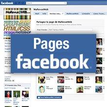 Aux faux amis facebookiens du FFS ! dans Non classé facebook-page-fan111
